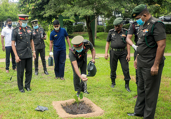 Tree Planting Programme to mark the World Environment Day